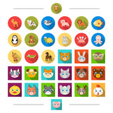 Reserve, sea, ecology and other web icon in cartoon style. Birds, nature, zoo, icons in set collection. - 175541930