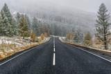 road asphalt snowfall forest fall - 175580925