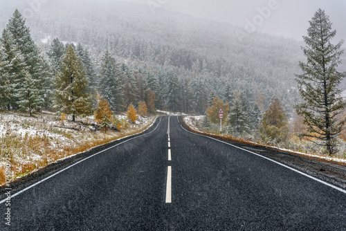 Poster Natuur road asphalt snowfall forest fall