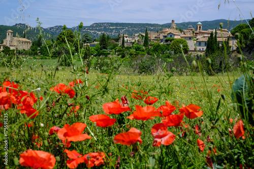 Poster Klaprozen Vue sur le village de Lourmarin en Provence, France. Champ de blé et des coquelicots au premier plan.