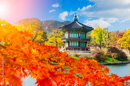 Foto op Canvas Seoel Autumn at Gyeongbokgung Palace,Seoul South Korea.