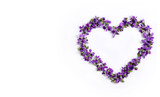 Delicate spring violets in the shape of a heart on a white background close up - 175600713