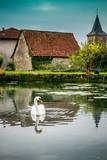 Au bord de l'étang dans l'Aveyron - 175625307