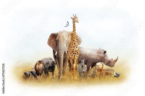 Poster African Safari Animal Fantasy Land