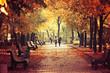 Autumn nature landscape. Footpath in the park