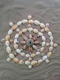 steuerrad aus muscheln im strandsand - 175637931