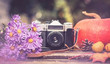 old camera on the background of the gifts of autumn: bouquet of lilac autumn asters, pumpkins, maple leaves, pinecone and quince