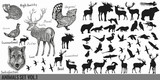 Huge super collection or set  of vector hand drawn detailed  forest animals - 175640790