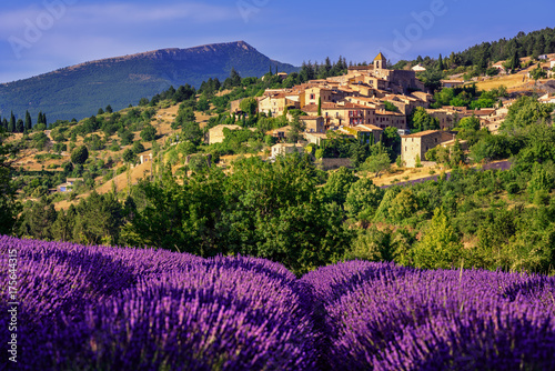 Aurel town and lavender fields in  Provence, France Poster