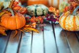 Autumn pumpkin background - 175648517