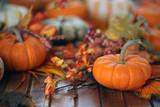 Autumn pumpkin background - 175648529