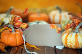 Autumn pumpkins with sale tag background - 175648542