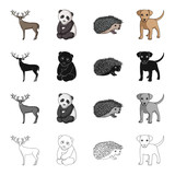 Elk, horns, panda, and other web icon in cartoon style.aAimal, domestic, wild, icons in set collection. - 175666536
