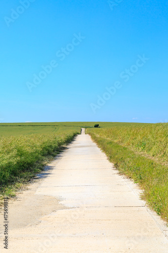 Fotobehang Blauw Pathway through Green Landscape