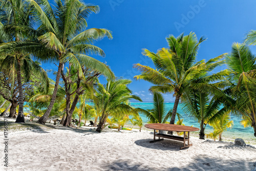 coconut tree on Polynesia beach Wonderful lagoon