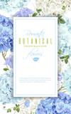 Hydrangea frame blue