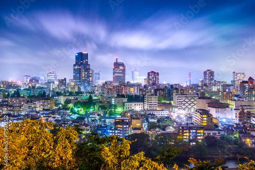 Fridge magnet Sendai, Japan Cityscape