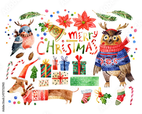 Keuken foto achterwand Uilen cartoon Cute bird with merry christmas congratulations