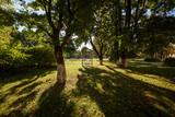 Элемент городского парка  - 175735755