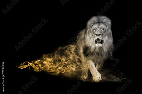 Aluminium Lion Lion one of the big five animals you must see in africa animal kingdom collection with amazing effect