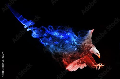 Plexiglas Eagle flag of the united states american bald eagle animal kingdom collection colorfull wildlife image with amazing effect