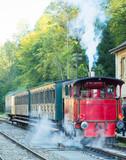 Historische Eisenbahn mit Dampflokomotive im Bahnhof in Luxembourg - 175736927