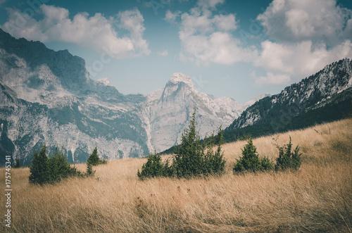 Foto op Canvas Groen blauw Valbona National Park