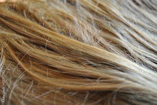 Długie włosy blond