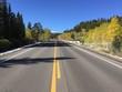 Road in Colorado at autumn - 175784771