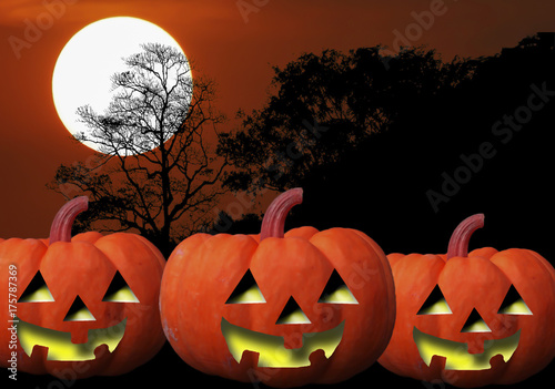 Beautiful Halloween illustration background with silhouette tree and sunset sky atmosphere.