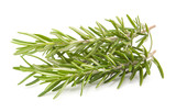 rosemary isolated on white - 175787717