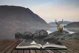 Stunning powerful red deer stag looks out across lake towards mountain landscape in Autumn scene concept coming out of pages in open book - 175807108
