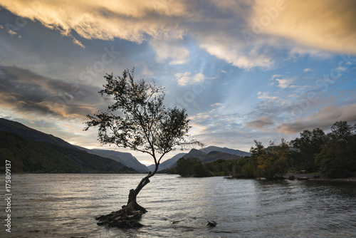 Keuken foto achterwand Beige Beautiful landscape image of Llyn Padarn at sunrise in Autumn in Snowfonia National Park
