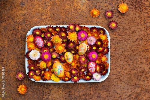 Kunterbunte Strohblumen