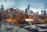 Central park in New York City at autumn morning, USA - 175819797