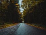 Strraße durch herbstlichen Wald nach Regenschauer #2 - 175833727