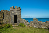 Carrigaholt Castle - 175847941