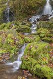 Wasserfall - 175852126