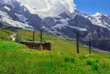 Famous red train coming down from Jungfraujoch Top of Europe to Kleine Scheidegg. Summer picture - Kleine Scheidegg, Bernese Oberland, Switzerland