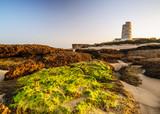 Wachturm bei El Palmar an dere Costa de la luz - 175868116