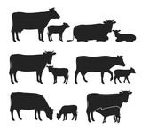 Vector cow and calf silhouettes collection