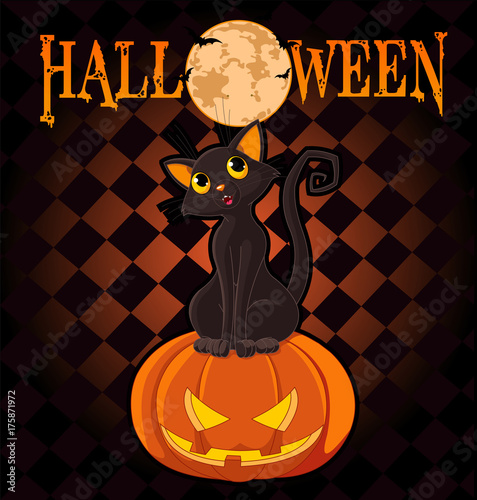 Staande foto Sprookjeswereld Halloween Cat on Pumpkin