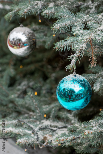 Close-up detail of multiple shiny blue and white ball ornaments hanging from a snow covered pale spruce tree with Christmas lights Poster