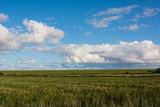 Wiesen, blauer Himmel - 175900930