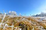 Landschaft im Herbst mit Raureif und Frost