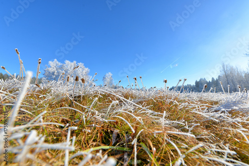 Fotobehang Landschappen Landschaft im Herbst mit Raureif und Frost