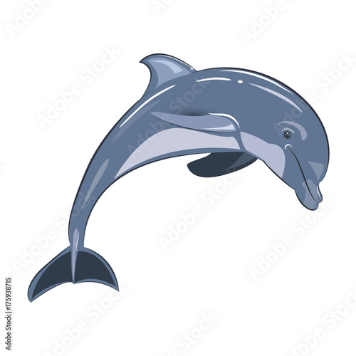 Fototapeta Vector illustration of blue dolphin on a transparent background