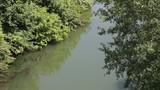 Peaceful river scenery - 175944170