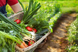 Farmer holding basket with mixed vegetables - 175949938