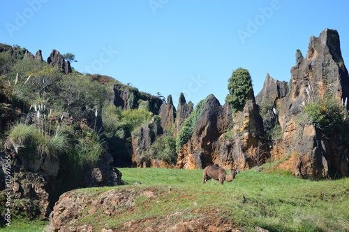 Fotobehang Pistache Parque Natural Cabarceno Cantabria España